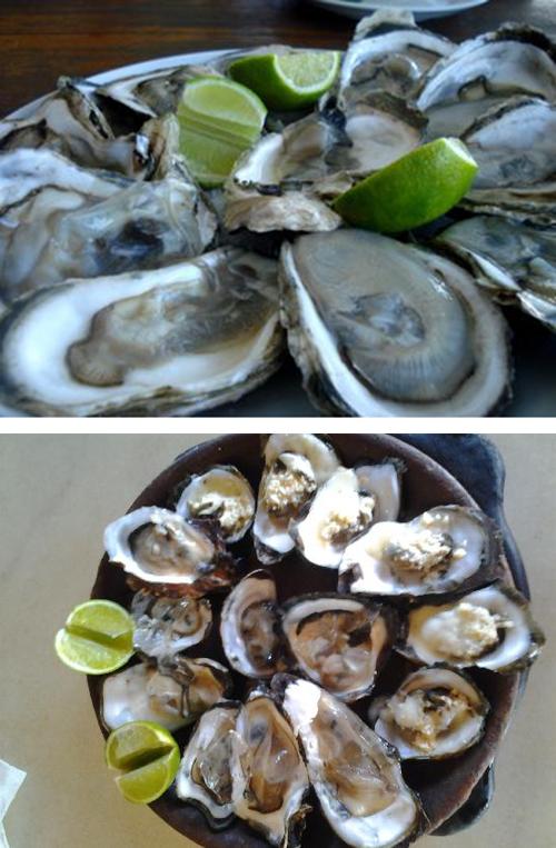 curiozzzo.com-7-comidas-e-segredos-ostras