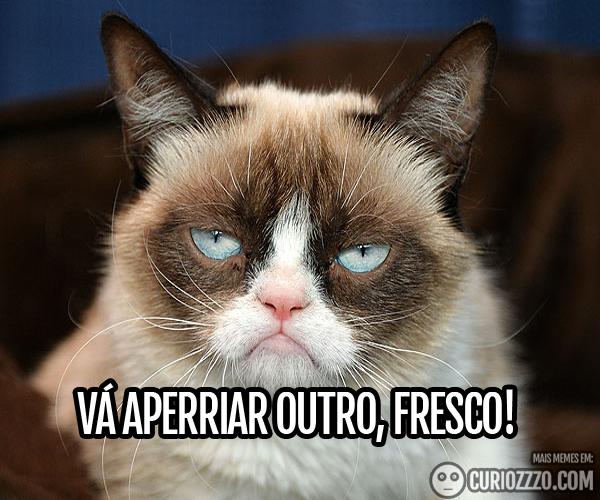 curiozzzo.com-os-melhores-memes-potiguares-de-todos-os-tempos-aperriaroutro
