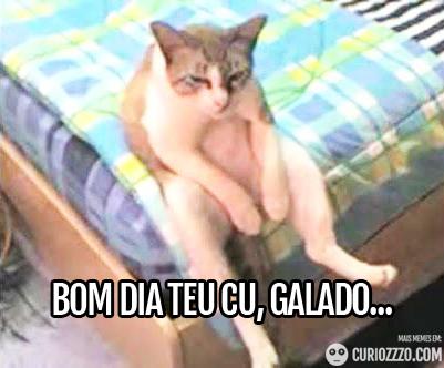 curiozzzo.com-os-melhores-memes-potiguares-de-todos-os-tempos-bomdia