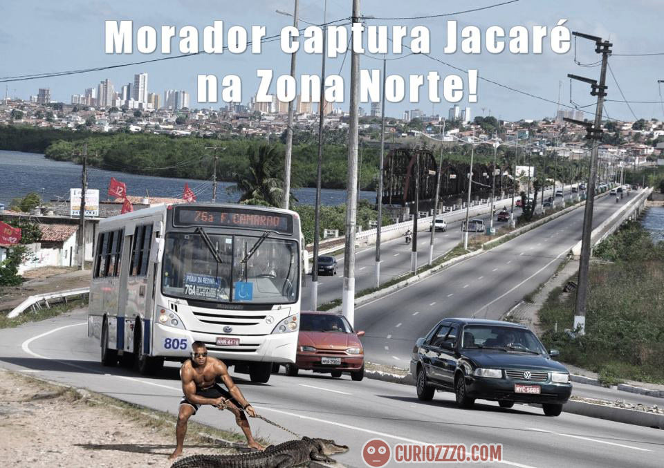 curiozzzo.com-imagens-julgar-verdade-mentira-jacare-igapo