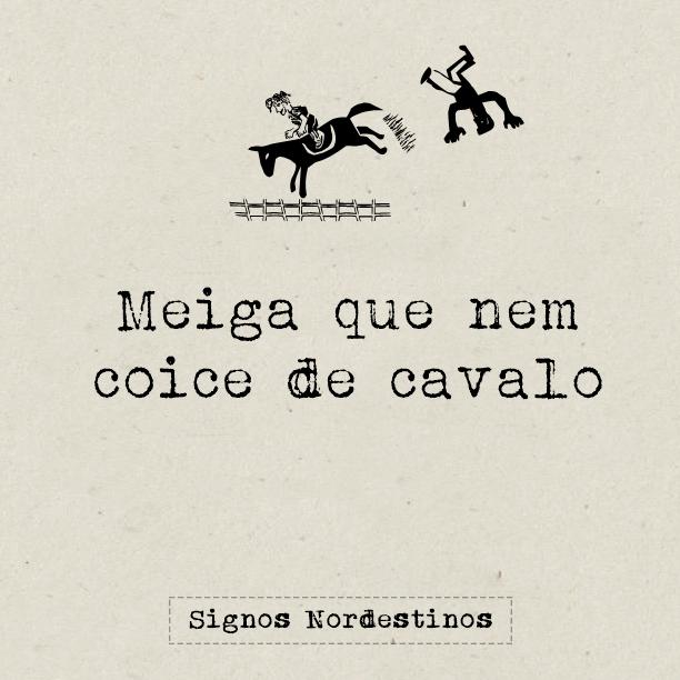 post-pagina-signos-nordestinos-meme-meiga-coice-cavalo
